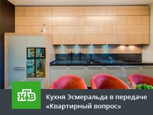 Кухня Эсмеральда в сером цвете в передаче Квартирный вопрос